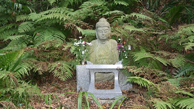 釈迦堂跡(妙法寺)