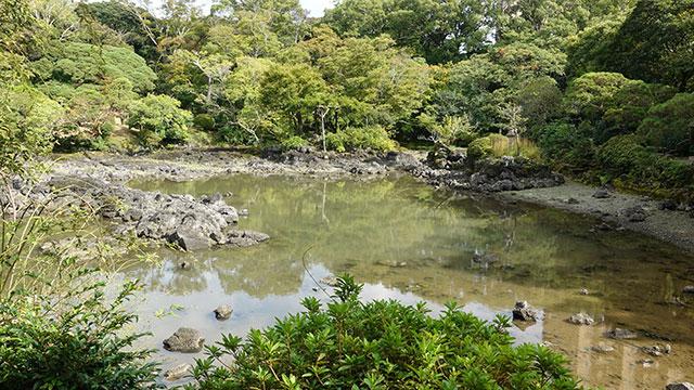 小浜池(楽寿園)