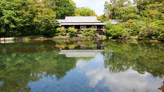 満水時の小浜池(楽寿園)