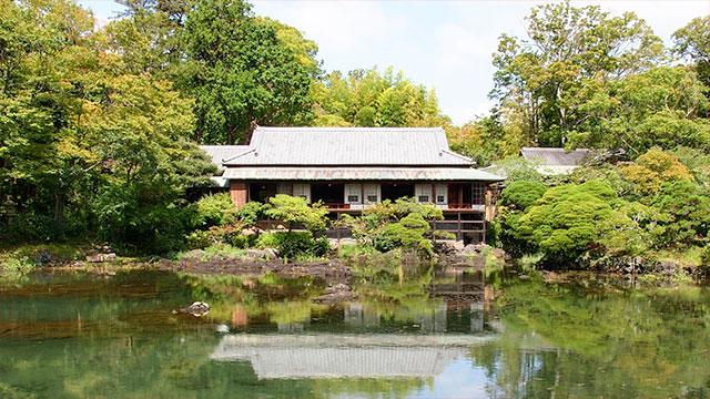 楽寿園(三島観光)