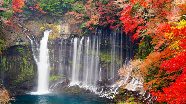 紅葉(白糸の滝)