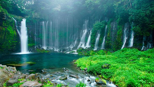 水と緑(白糸の滝)