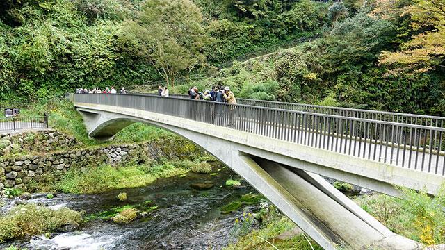 滝見橋(白糸の滝)