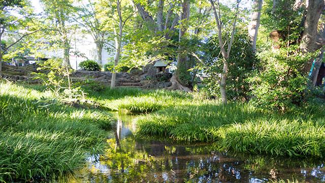 水と緑に囲まれた公園(白滝公園)