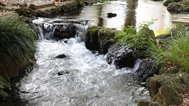 水遊び(白滝公園)
