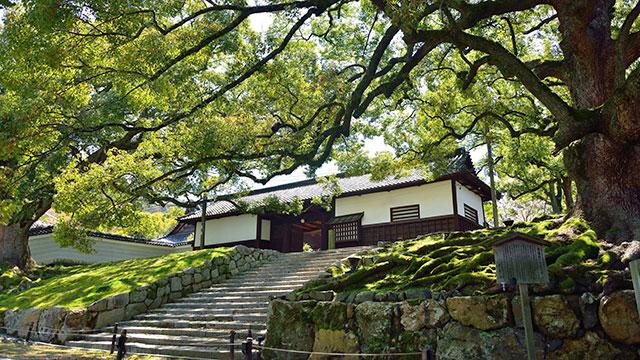 青蓮院門跡(京都東山)