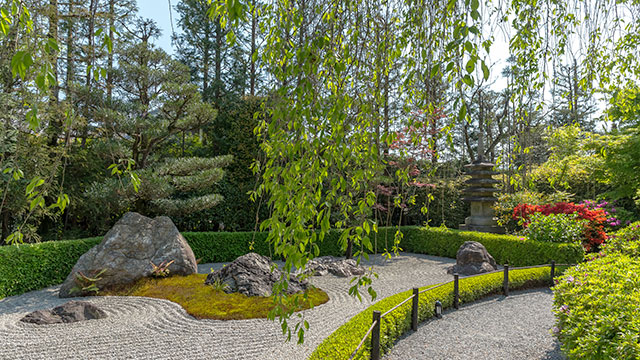 陰陽の庭(退蔵院)