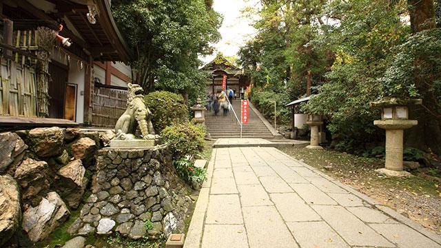 境内(宇治神社)