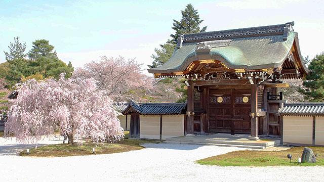 勅使門(大覚寺)