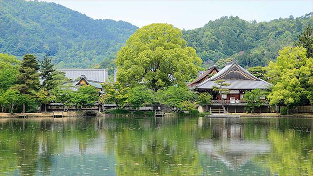 大沢池(大覚寺)