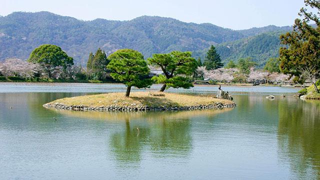 天神島(大覚寺)