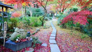 京都 直指庵想い出草ノートで知られる隠れ家的な名所