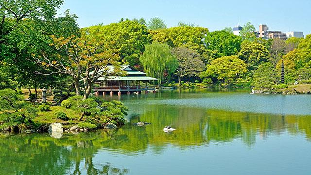 中の島と涼亭(清澄庭園)