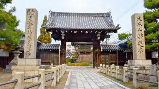京都 妙蓮寺秋に咲く御会式桜で有名な日蓮宗大本山
