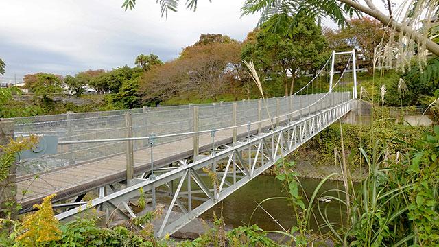 鮎壺のかけ橋(鮎壺の滝)