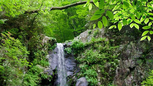つるべ落としの滝(長泉町観光)