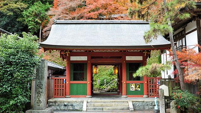 仁王門(愛宕念仏寺)