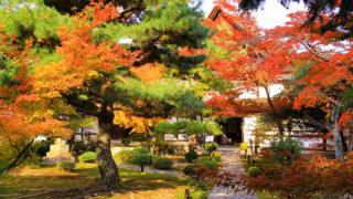 京都 鹿王院宿坊体験もできる紅葉が見事な寺院