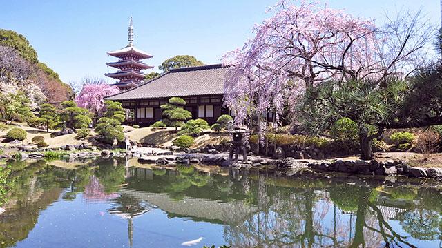伝法院 庭園(浅草寺)