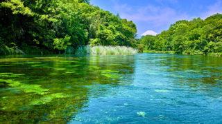 清水町観光湧水と緑が美しい町で史跡や自然を満喫