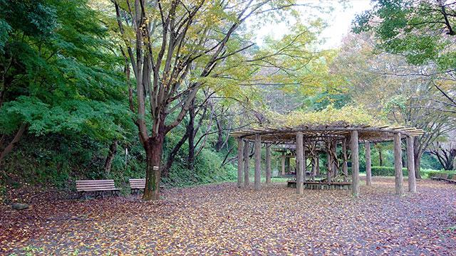 本城山公園(清水町観光)