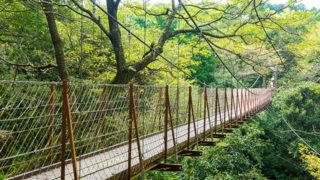 長泉町 駿河平自然公園クレマチスの丘に隣接する桜が美しい公園