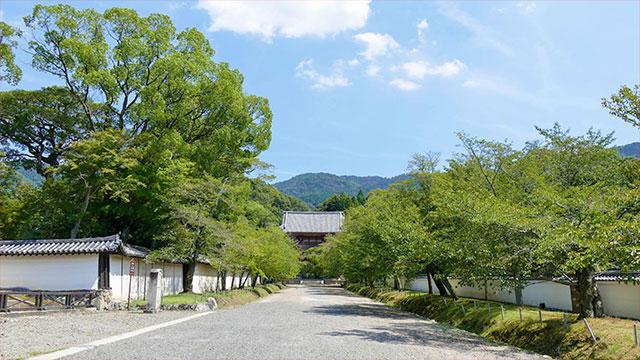 参道(醍醐寺)