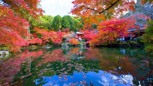 秋(醍醐寺)