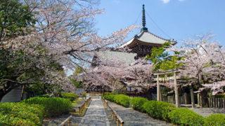 京都 本法寺本阿弥光悦作の庭園が美しい京都の隠れた名所
