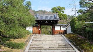 京都 霊鑑寺椿と紅葉が美しい皇室ゆかりの尼寺