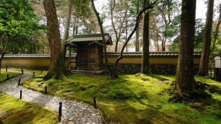 京都 西芳寺(苔寺)庭園の苔がとても美しい世界遺産登録の寺院