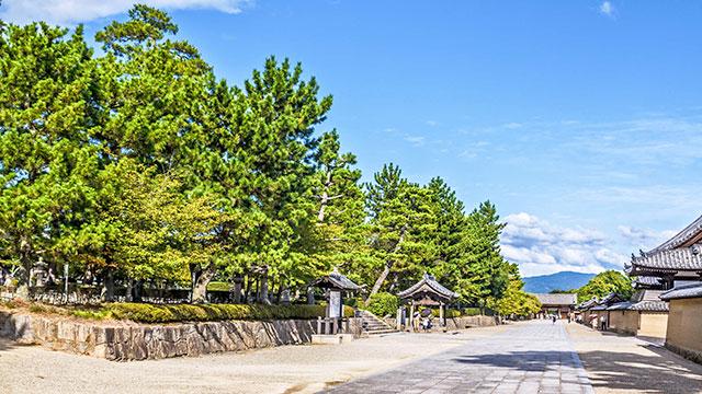 境内の緑(法隆寺)
