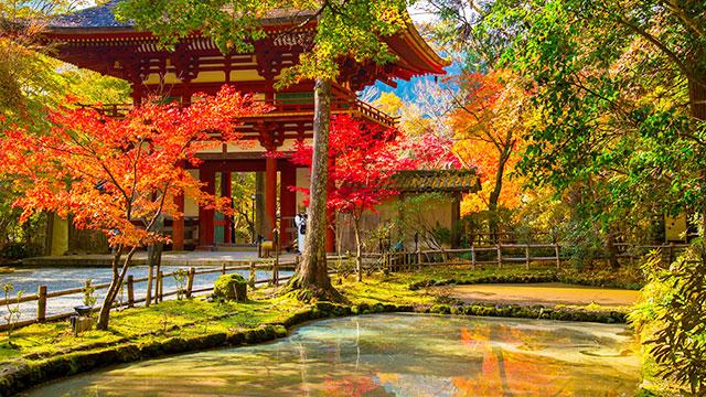 バン字池(室生寺)