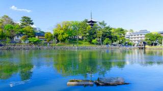 奈良 猿沢池池越しの景色が美しい南都八景の一つ