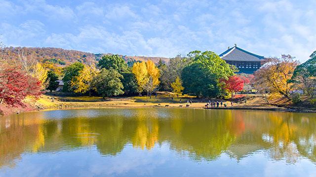 大仏池(東大寺)