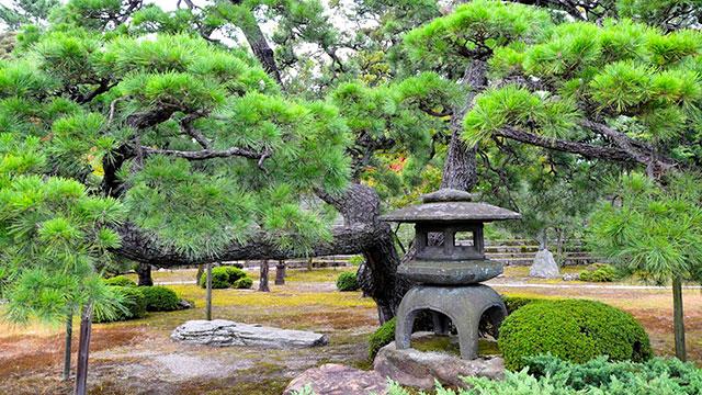 本丸庭園(二条城)